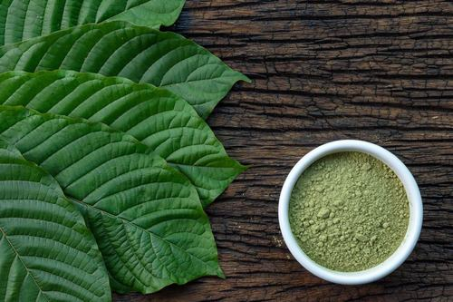 Kratom Powder & Extracts